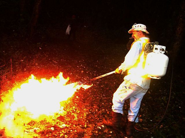 Cleanup is always more fun with a flamethrower!
